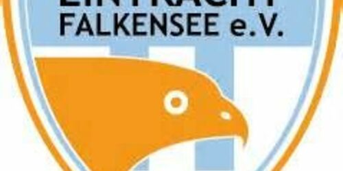 Cover-Grafic Fußball-4/-5 Festival in Falkensee